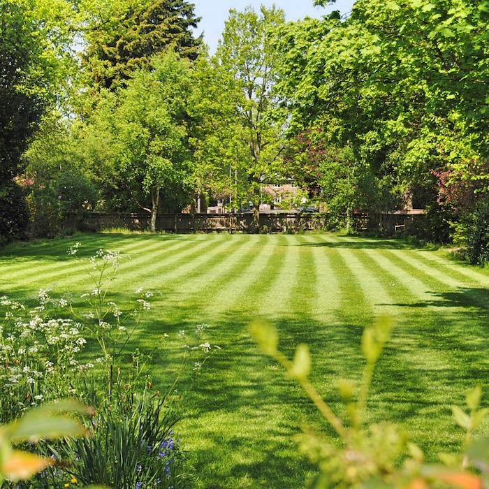 Lawn Mowing Cambridge Ontario